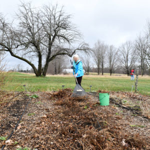 Community Cleanup At Canterbury Shaker Village
